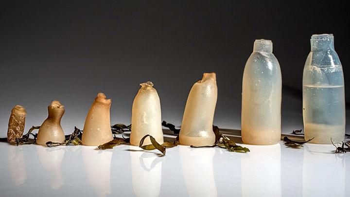 Proceso de desintegración de botellas fabricadas a partir de plástico biodegradable.