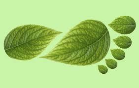 Huella ecológica verde como muestra del objetivo de la publicidad ecológica.